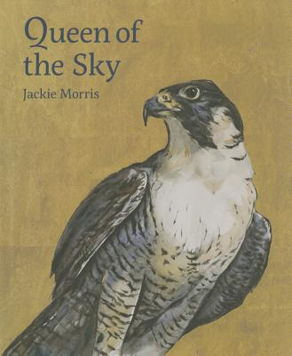 Queen of the Sky Cover Image