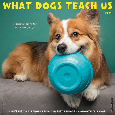 What Dogs Teach Us 2021 Wall Calendar Cover Image