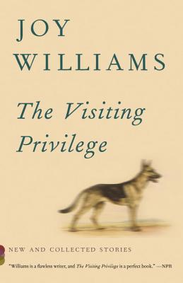The Visiting Privilege: New and Collected Stories (Vintage Contemporaries) Cover Image