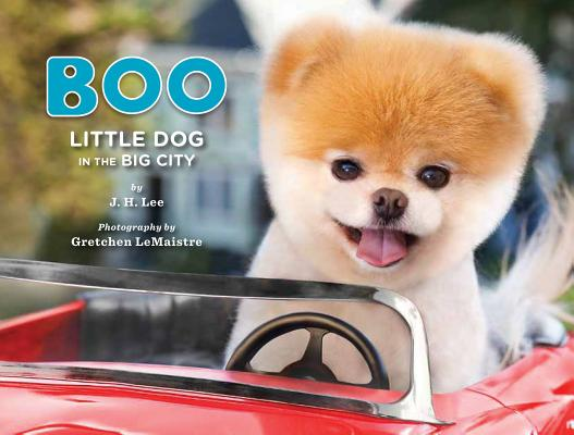 Boo: Little Dog in the Big City Cover Image
