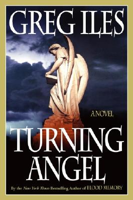 Turning Angel Cover