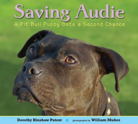 Saving Audie Cover