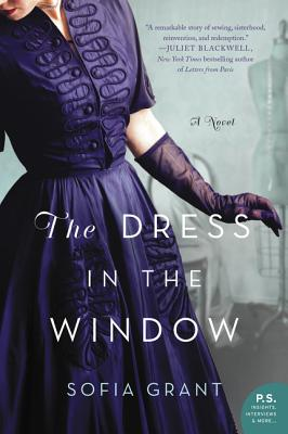 The Dress in the Window Cover