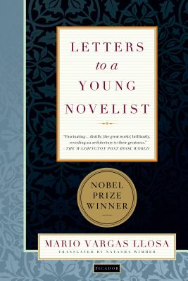 Cover for Letters to a Young Novelist