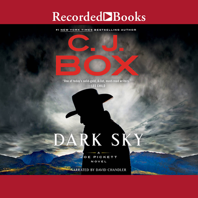 Dark Sky (Joe Pickett #21) Cover Image