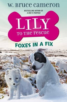 Lily to the Rescue: Foxes in a Fix (Lily to the Rescue! #7) Cover Image