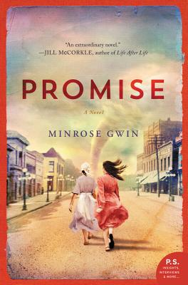 Promise: A Novel Cover Image