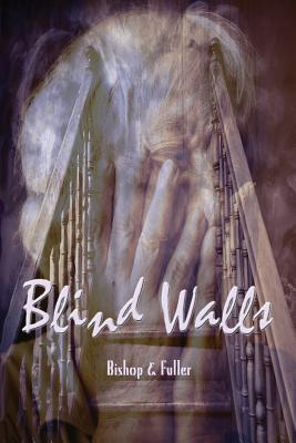 Blind Walls Cover Image