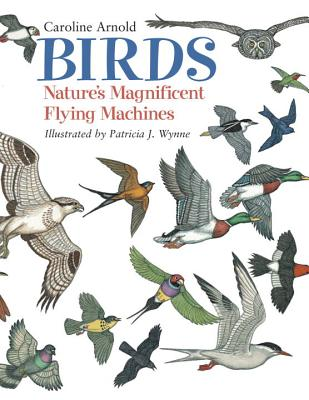 Birds: Nature's Magnificent Flying Machines Cover Image