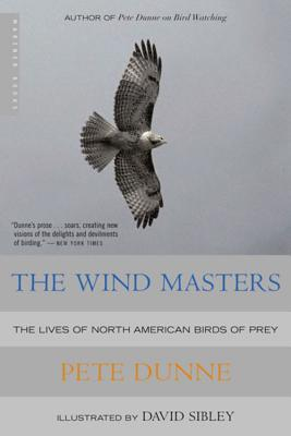 Cover for The Wind Masters