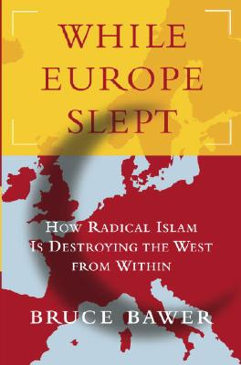 While Europe Slept Cover