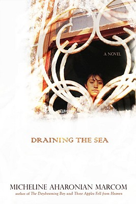 Draining the Sea Cover