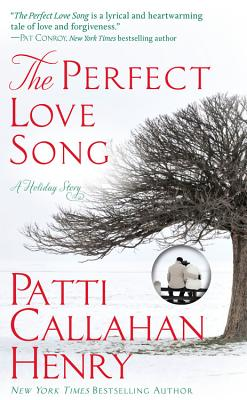 The Perfect Love Song Cover