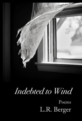 cover art for Indebted to Wind, by L.R. Berger