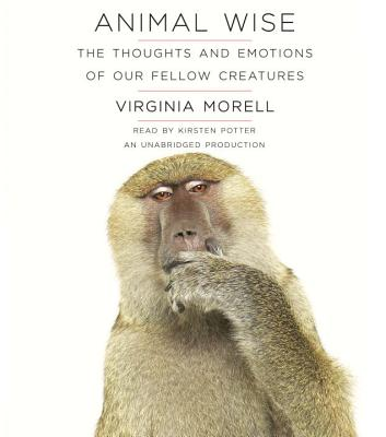 Animal Wise: The Thoughts and Emotions of Our Fellow Creatures Cover Image