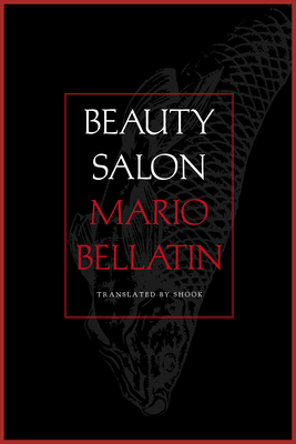 Cover for Beauty Salon