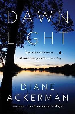 Dawn Light Cover