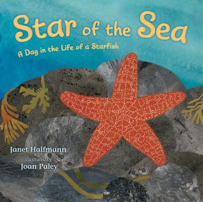Star of the Sea Cover