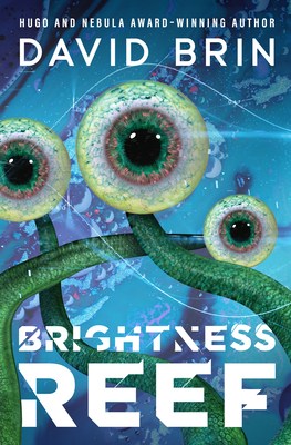 Brightness Reef Cover Image
