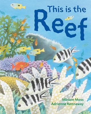 This Is the Reef Cover
