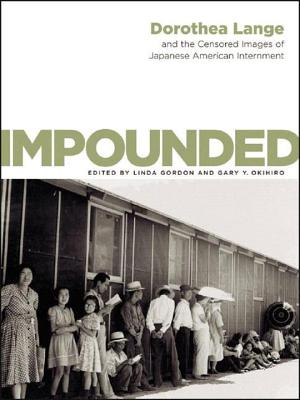 Impounded Cover