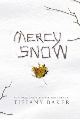 Mercy Snow Cover