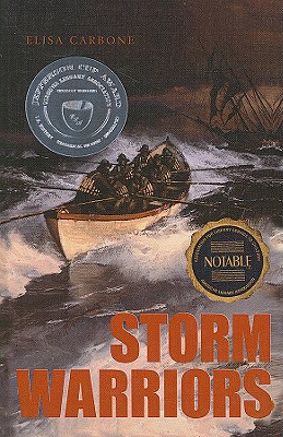 Storm Warriors Cover Image
