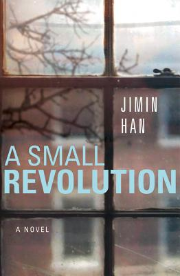 Cover for A Small Revolution