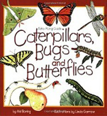 Caterpillars, Bugs and Butterflies: Take-Along Guide (Take Along Guides) Cover Image