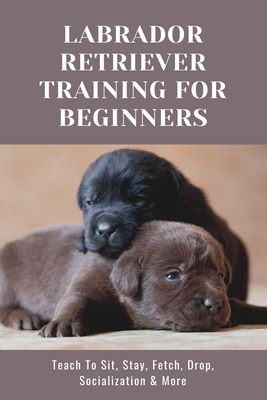 Labrador Retriever Training For Beginners: Teach To Sit, Stay, Fetch, Drop, Socialization & More: Dog Training Books Cover Image