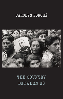 The Country Between Us Cover Image