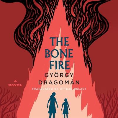 The Bone Fire Lib/E Cover Image