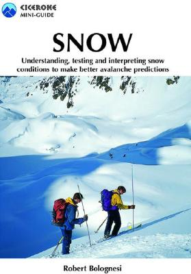 Snow: Assessing and understanding snow conditions to predict avalanches better Cover Image