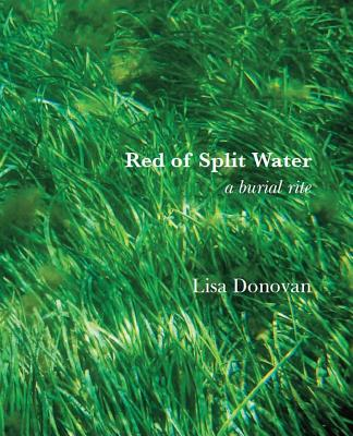 Red of Split Water Cover Image