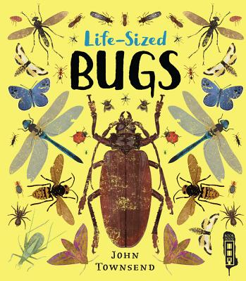 Life-Sized Bugs Cover Image