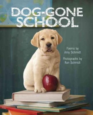 Dog-Gone School Cover Image