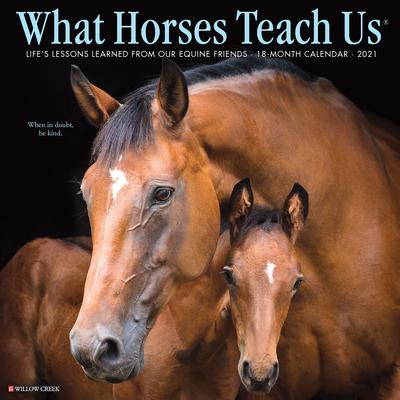 What Horses Teach Us 2021 Wall Calendar Cover Image