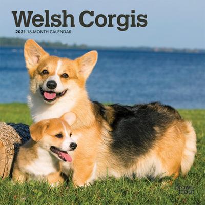 Welsh Corgis 2021 Mini 7x7 Cover Image