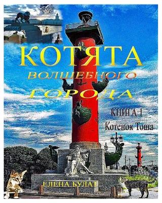 Котята Волшебного Город& Cover Image