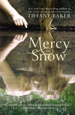 Mercy Snow: A Novel cover