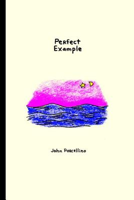 Perfect Example Cover