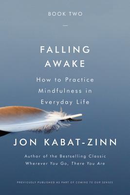 Falling Awake (Bargain Edition)
