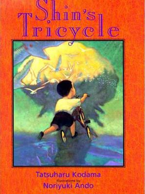 Shin's Tricycle Cover