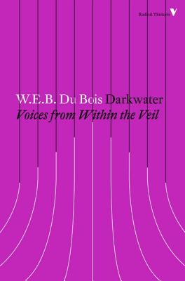Darkwater: Voices from Within the Veil (Radical Thinkers) cover