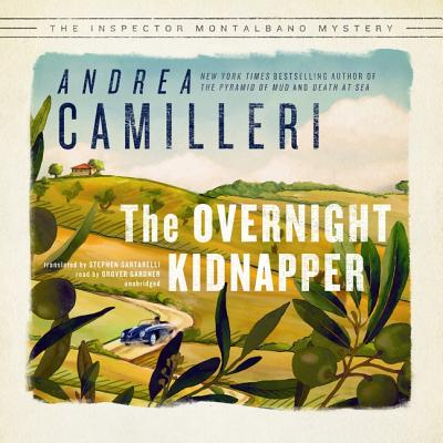 The Overnight Kidnapper Lib/E Cover Image
