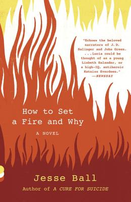 How to Set a Fire and Why: A Novel (Vintage Contemporaries) Cover Image