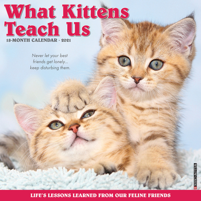 What Kittens Teach Us 2021 Wall Calendar Cover Image