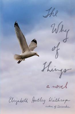 The Why of Things Cover