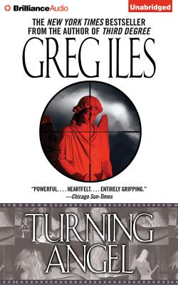 Turning Angel (Penn Cage Novels #2) Cover Image