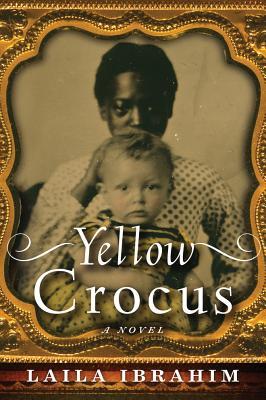 Yellow Crocus Cover Image